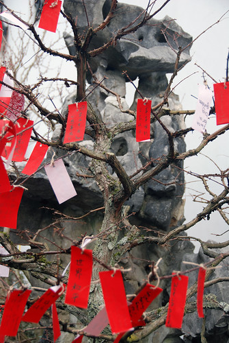 Red Prayer Tree in Dr. Sun Yat Sen Garden, Vancouver