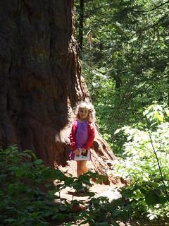 Small Girl Amoung the Giants