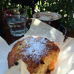 Chocolate, Mango Muffin with a Mocca.