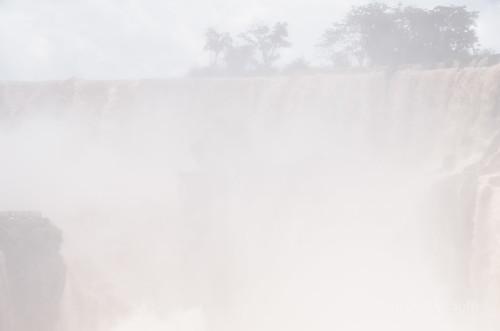 【写真】2015 世界一周 : イグアスの滝・ロワートレイル(1)/2020-09-13/PICT7499