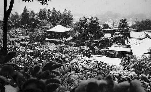 The Snow at Ginkakuji-Temple,Kyoto,Japan :京都、雪の銀閣寺
