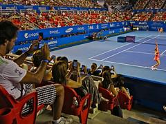 OK ! All camera phones focus on Sharapova please !!