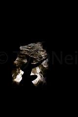 Mountain Mine