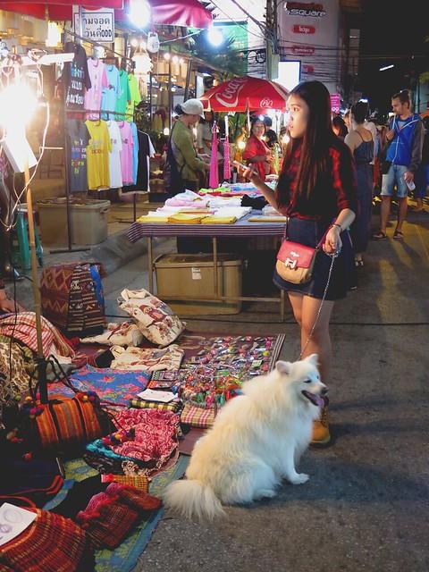 Chiang Mai night market via TinyBlackBird.com