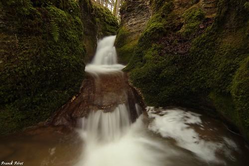 en champs du des sur cascade franchecomté petite rive affluent doubs ruisseau droite lison poix amont coulans