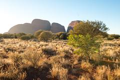 Kata Tjuta, Northern Territory, Australia.