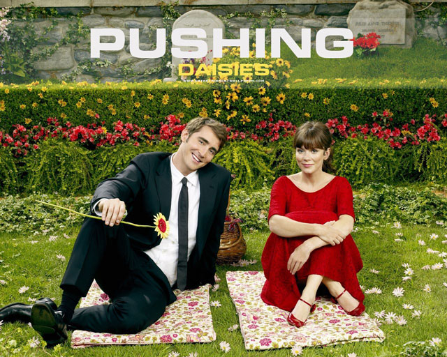 Pushing-Daisies-Cast-pushing-daisies-791482_1280_1024