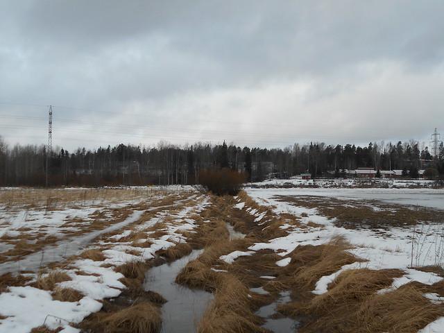 Poikkeuksellisen aikaista lumen sulamista Espoon Leppävaaran ja Karakallion välillä 23.2.2015