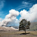 A big smoker - Enter The Tengger Massif, Indonesia by Maria_Globetrotter