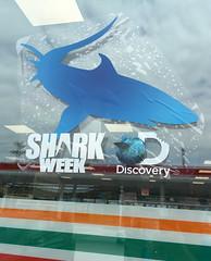 shark week, even on the 7-11 window
