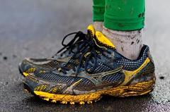 Kam běží svět běžeckých bot?