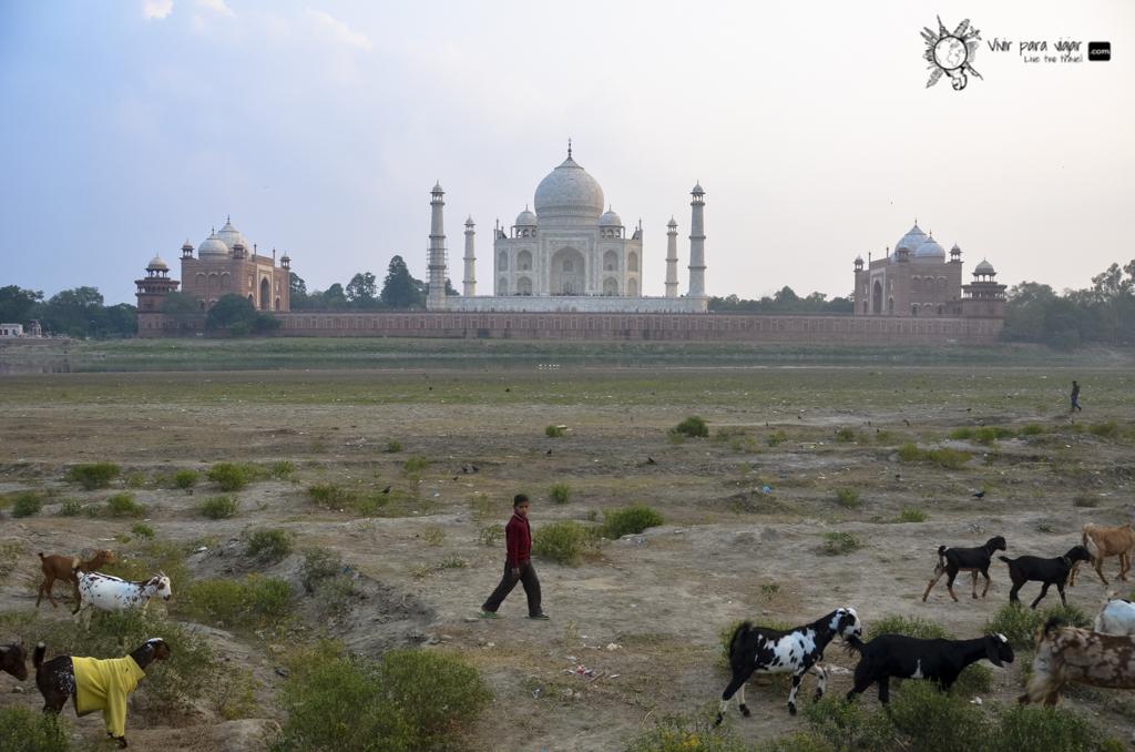 Taj Mahal-2597