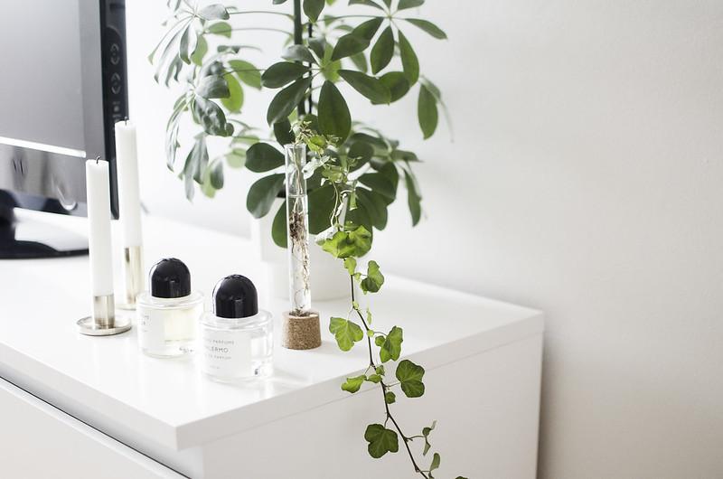 DIY vitro vase