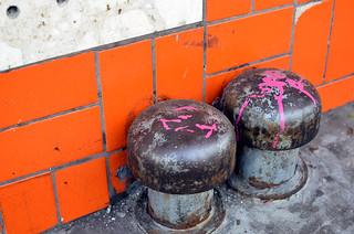 Urban Toadstools