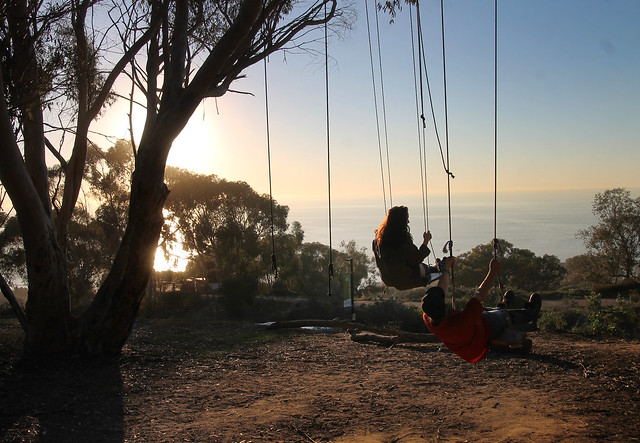 Secret Swings