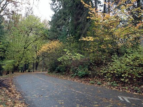 Frink Park - Seattle