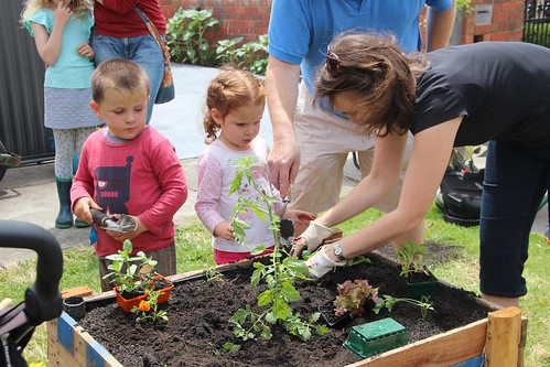 Early lesson for kids in Growing our own food IMG_9506