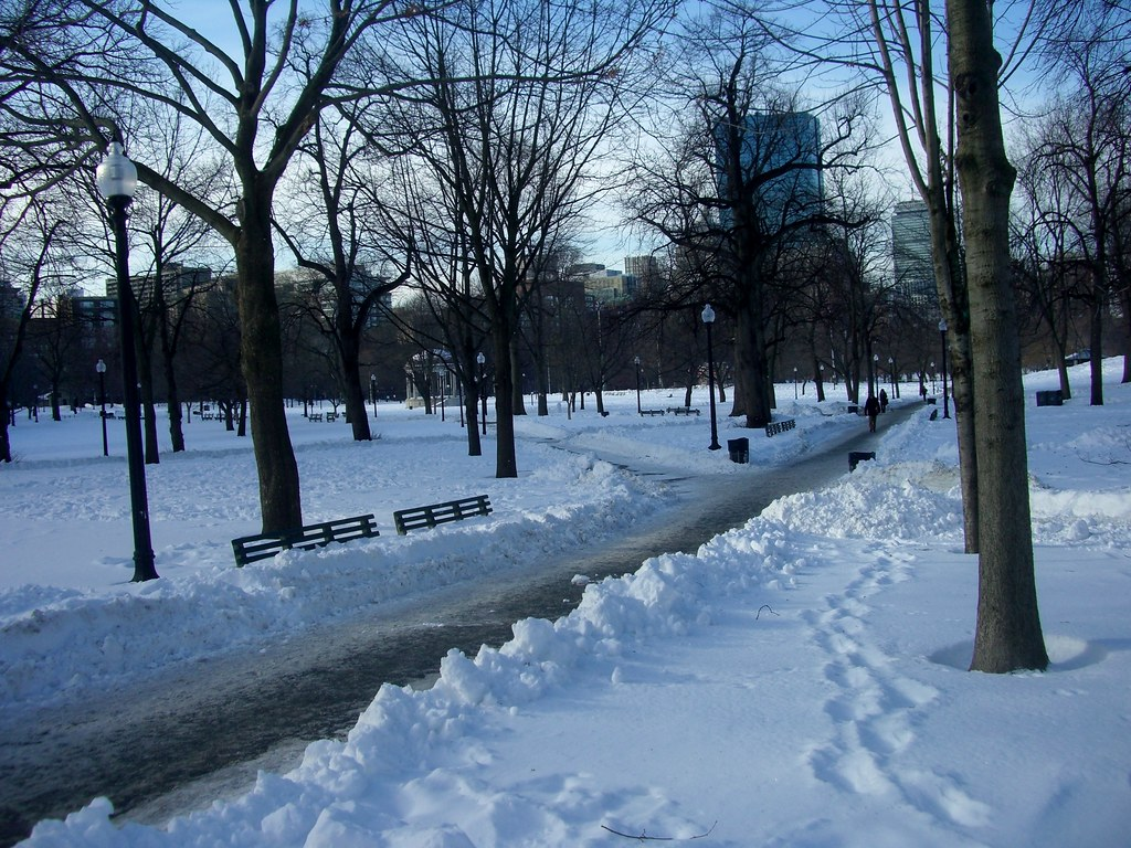 Boston Common snowy pathways