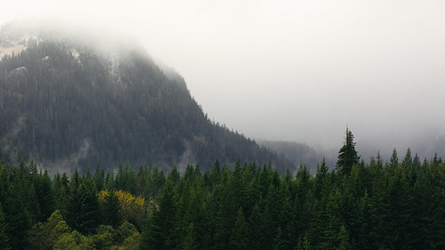 landscape mountains forest nature scenic cloudy foggy clouds overcast pacificnorthwest snoqualmiepass canoneos5dmarkiii canon135mmf2lusm trees washington johnwestrock