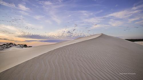 park port pastel dunes national lincoln sanddunes portlincolnnationalpark