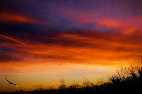 pink red england orange clouds sunrise colours unitedkingdom smeetonwesterby