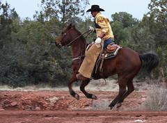 life of a cowboy