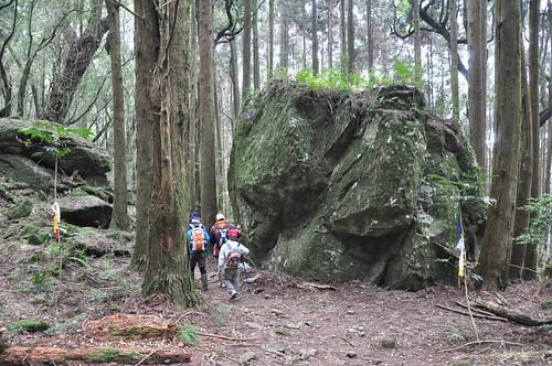加里山步道-蓬萊-大坪登山口