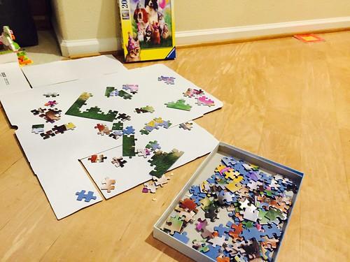 Puzzle Pro