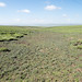 Degraded grasslands, Qinghai, China