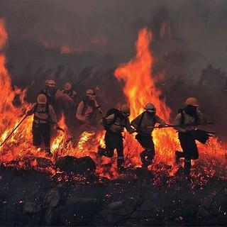 Devastating fires still raging in the Cape South peninsula ....