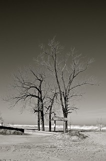 Indiana Dunes National Lakeshore - Chesterton - Porter County - Indiana