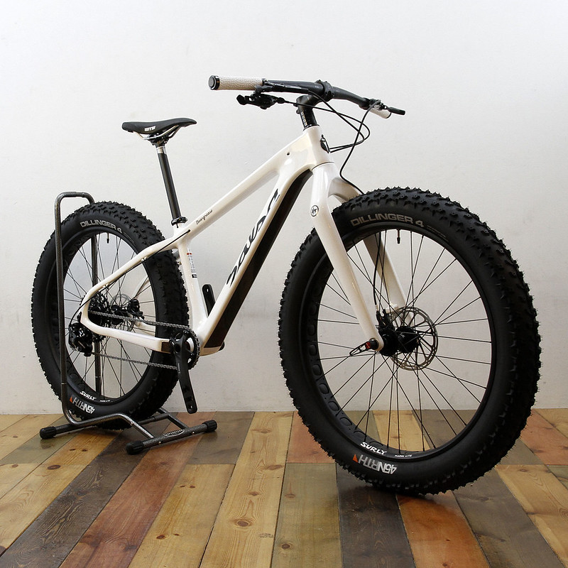 SALSA CYCLES / 15 BEARGREASE CARBON 1