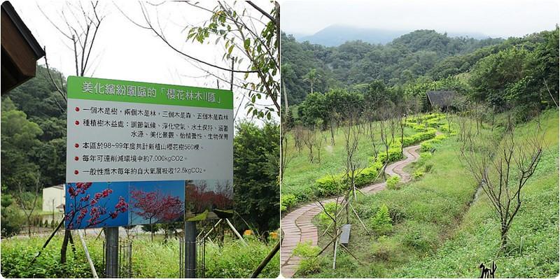 三峽碳中和樂園櫻花林