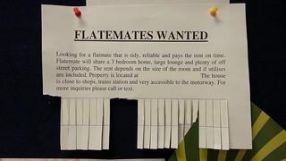 Flatmates Wanted