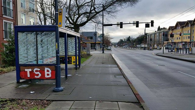 A bus stop photo by merm