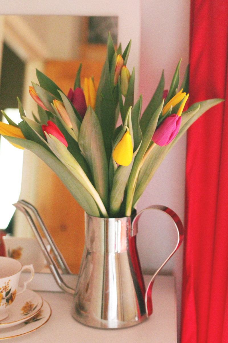Spring Tulips, Bumpkin Betty