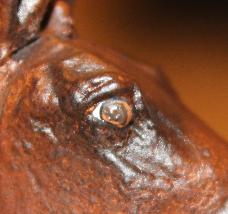 How to Paint Brown Horse Eyes in Acrylics 16347280752_f04fff0674_o