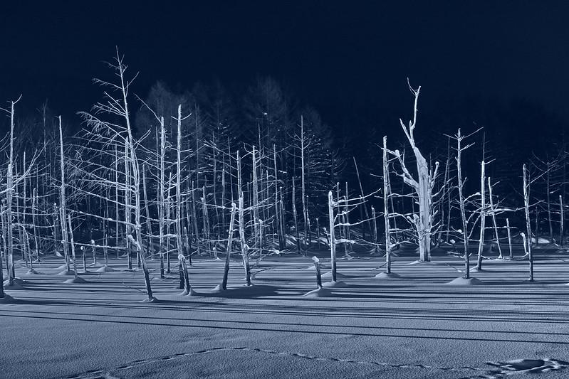 Illuminated Biei Blue color Pond 5