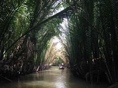 Passeio pelo delta do rio Mekong