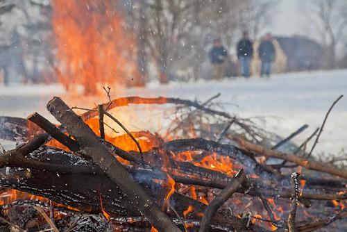 bonfire_edaniel