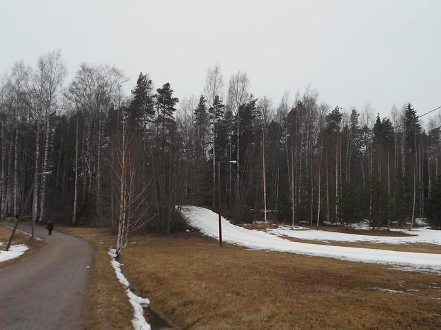Poikkeuksellisen aikaisen kevään ja sulamisen erikoisilmiöitä: tekolatu Espoon Leppävaaran ja Karakallion välillä 26.2.2015