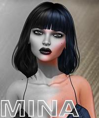 Hair Fair 2016 - Mina 3