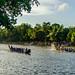 Spectator    Payipad boat race 2016,Alappuzha,Kerala.