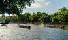 Spectator |  Payipad boat race 2016,Alappuzha,Kerala.
