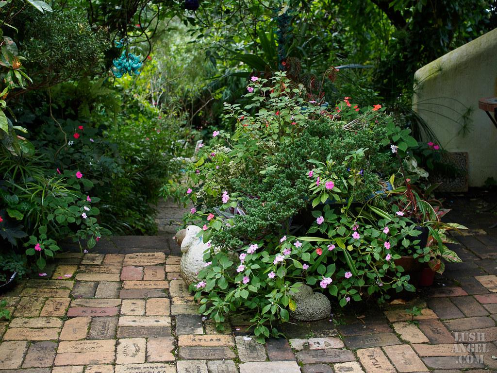 marcia-adams-garden