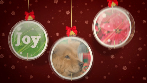 expresso_xmas_wishes_fullHD (0.00.06.04)