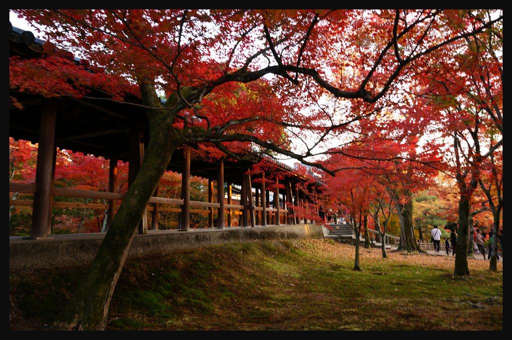日本京都[南区]-東福寺.40