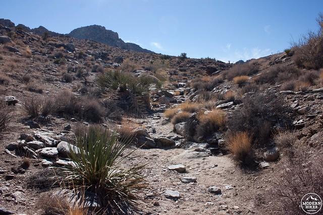 Off Trail Hiking Towards Johnny Lang Canyon