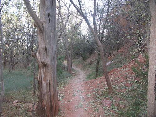 Cottonwood Trail 3