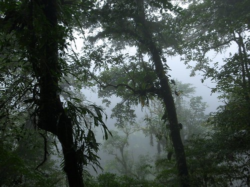 cloud nature rain forest landscape volcano nationalpark costarica tenorio parquenational